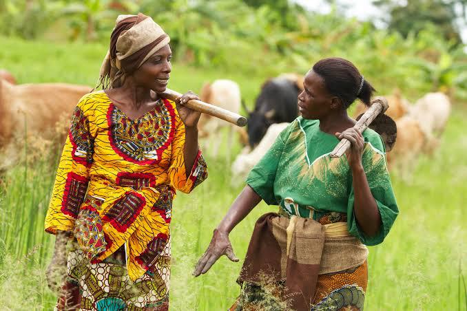 africa 39 s women