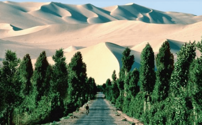 Africa's Ambitious Great Green Wall to Become the World's Largest Living Structure