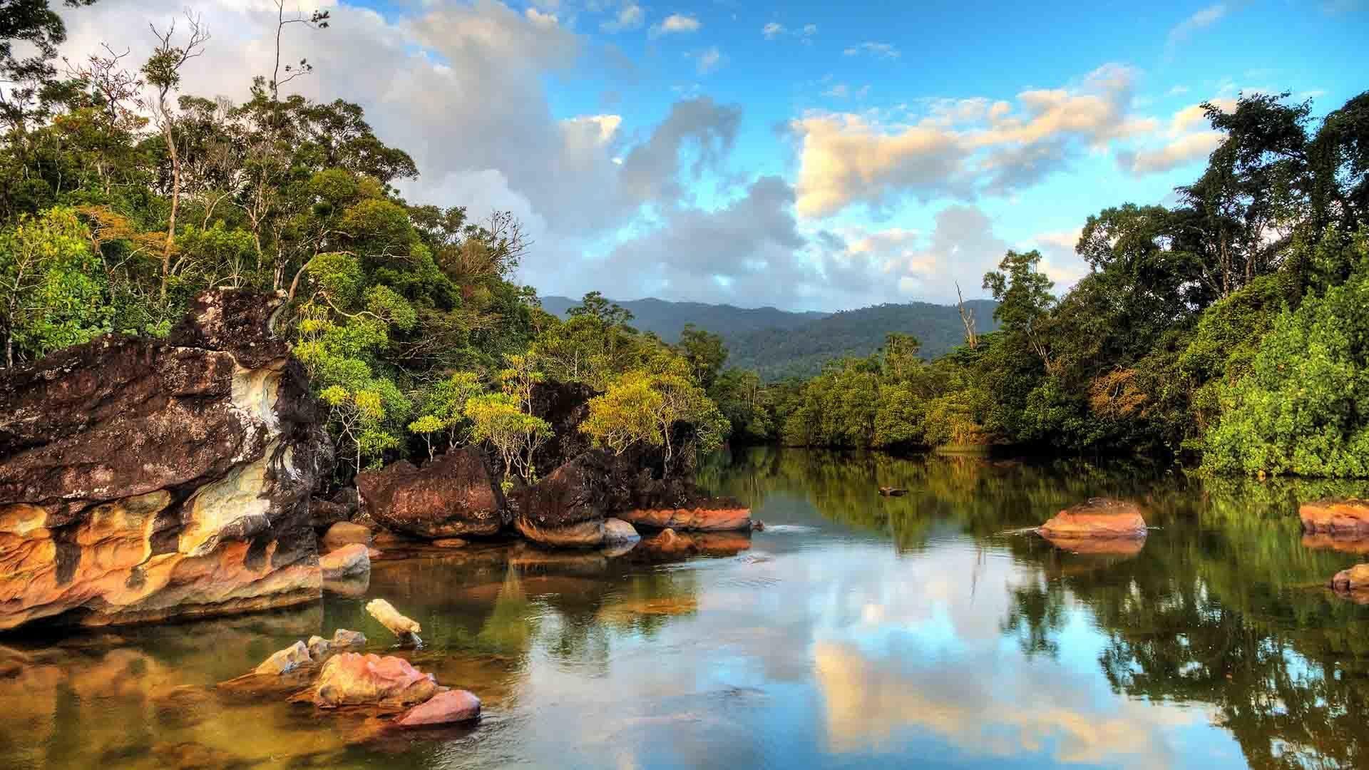 Madagascar Ghana And Zimbabwe Among Top Trending Summer